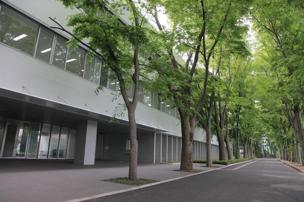 早稲田大学高等学院ギャラリー
